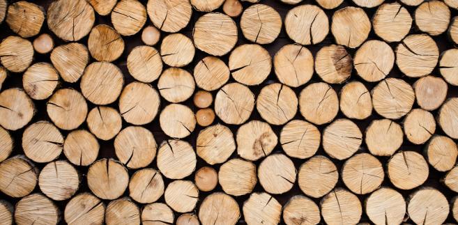 Ponadczasowość drewna oraz drewnianych drzwi